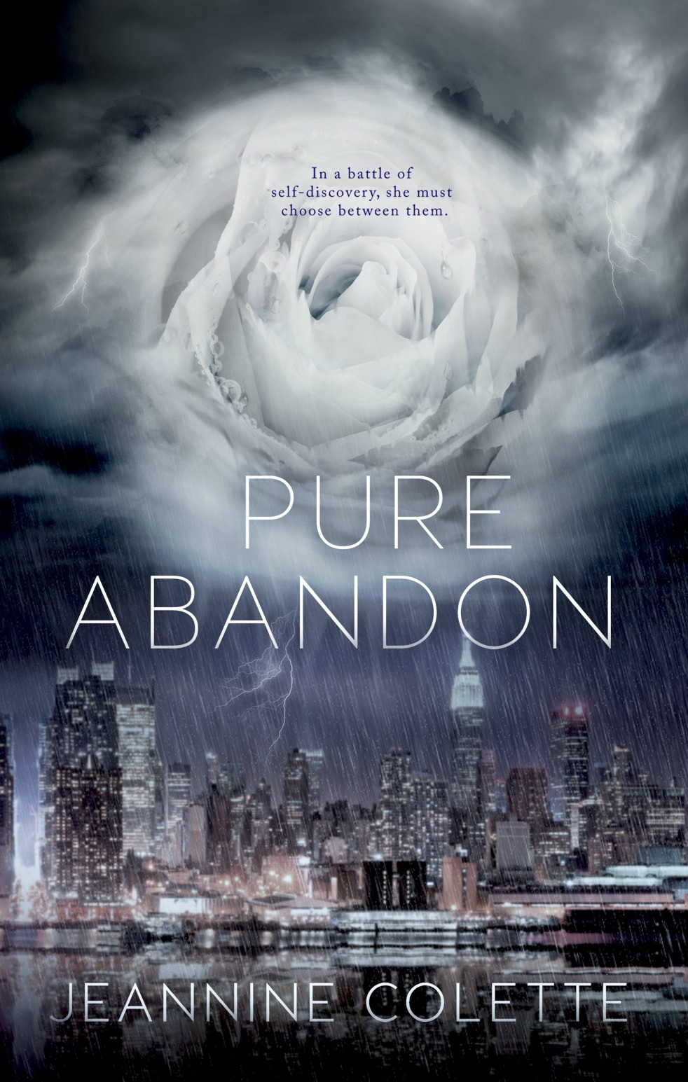 Pure Abandon Ebook Cover